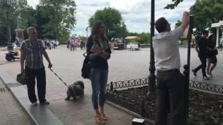 """Как """"Мой город"""" помогал устанавливать пакеты для собак на Приморском бульваре"""