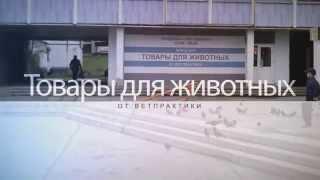 Зоомагазин в Снежинске(, 2015-08-27T18:03:32.000Z)