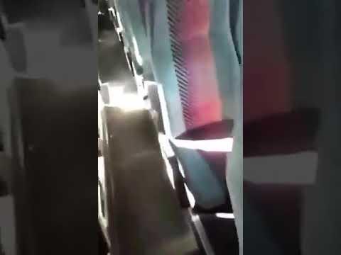 Китайские туристы гадят в автобусе. Санкт-Петербург