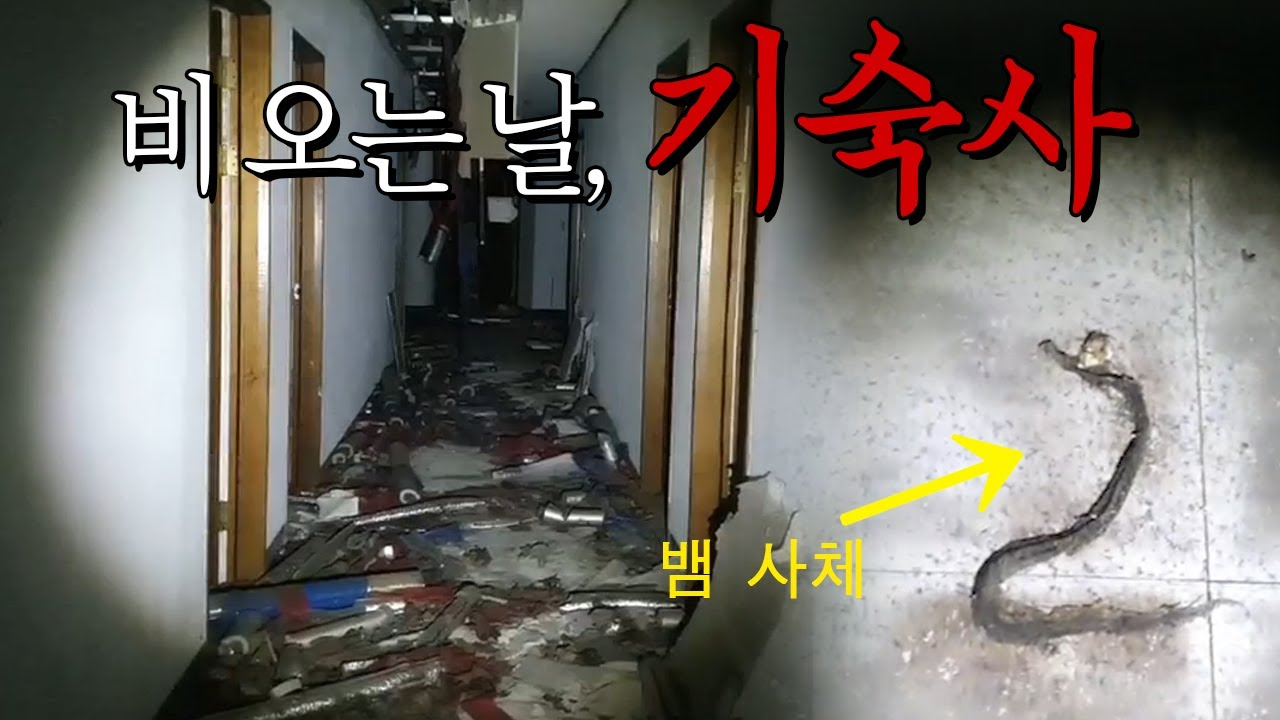 ENG SUB)흉가 입구에 죽어있는 뱀.. 불길한 기운의 기숙사 [Dead snakes, fire at the entrance to be haunted dorm.]
