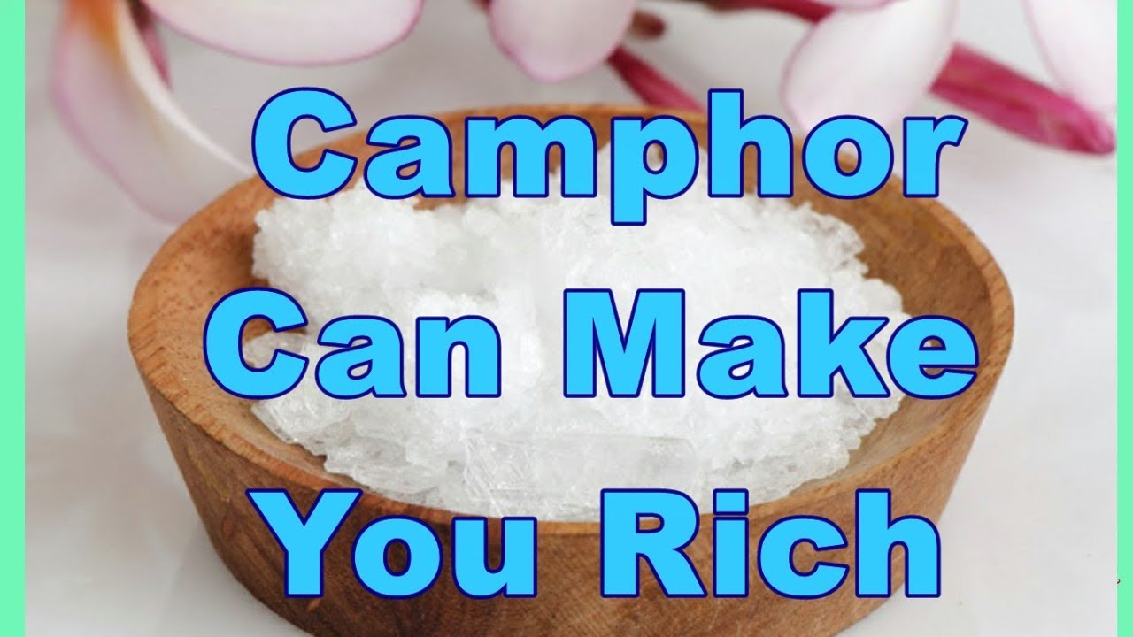 Camphor Can Make You Rich I Camphor Benefits I Camphor Uses I Divine Jyotish