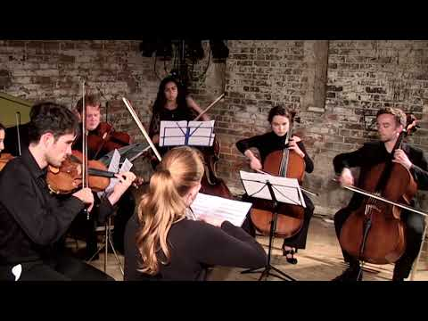 Cherubim Chamber Soloists - Lament for Jo Cox, MM Steer