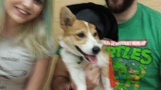 Betty Graduates Puppy School