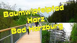 😀🌲Baumwipfelpfad/Harz-Bad Harzburg*Spazieren zw. Baumkronen auf 1000 m  *Niedersachsen😎Baumkronen