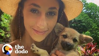This Woman On Vacation Stopped Everything to Save a Sick Puppy in Bali | The Dodo