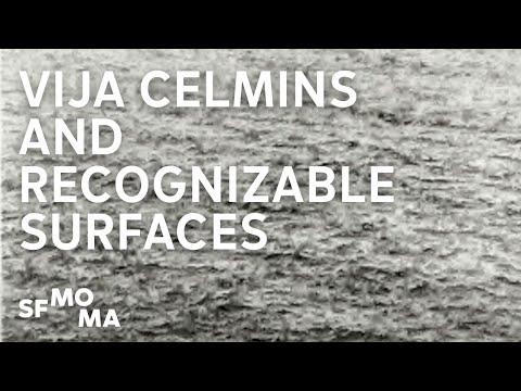 Vija Celmins Began with Recognizable Surfaces