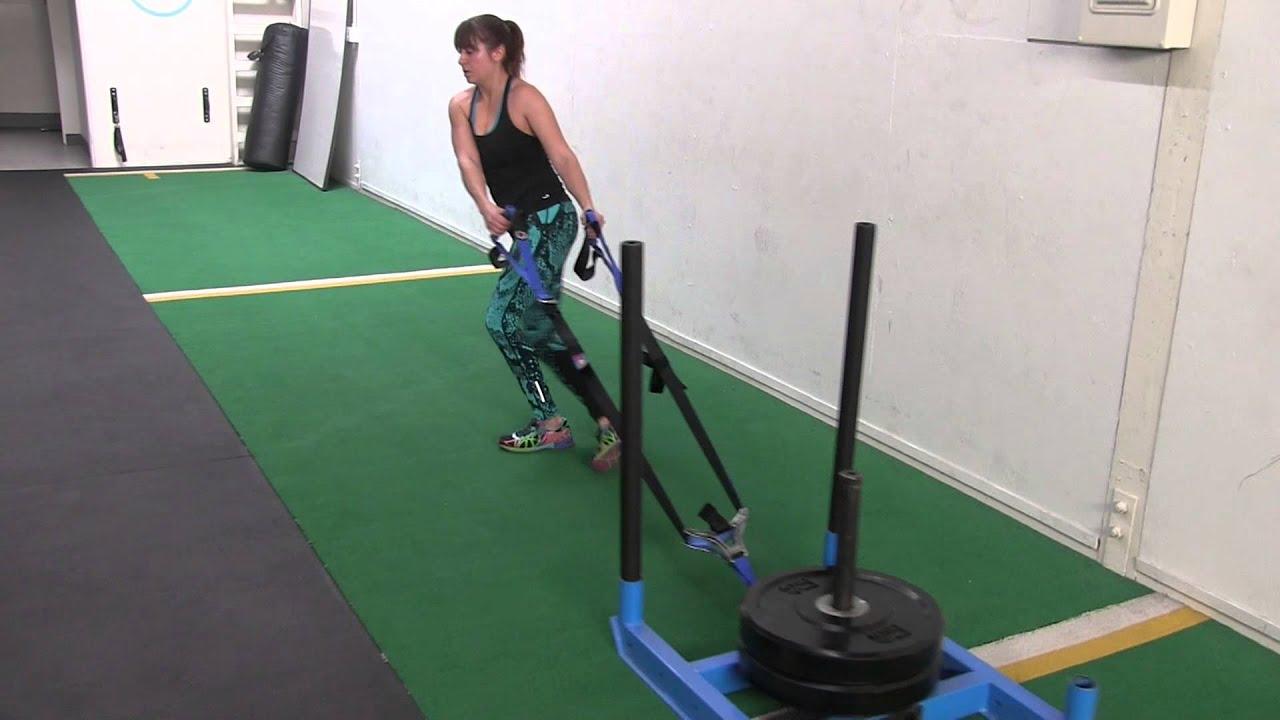 Sled Exercises 16 Sled Workout Moves And Sled