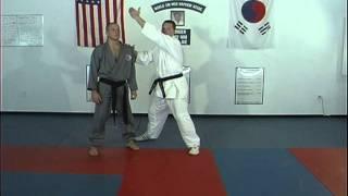 Hapkido Basic Kicks 11 thru 15, Ji Han Jae