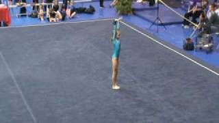 Gymnastics Level 4 State Meet