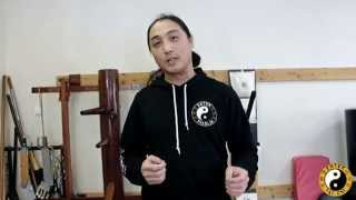 FREE Webinar Details: The Complete Wing Chun Sil Lum Tao Breakdown Part 2