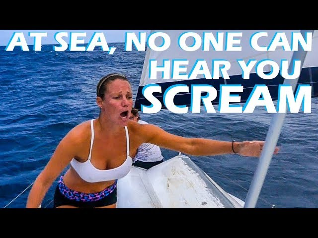 north-australia-snake-prank-sailing-vlog-115