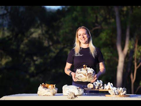 Samford Valley Mushrooms Tour - Samford Edible Garden Trail 2020: Day 9 - Madi Mushroom (Video 1)