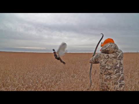 Pheasant Hunt With Traditional Bow | 16 SLOW-MO SHOTS & THE GREATEST MISSES In Bowhunting (ONE HIT)