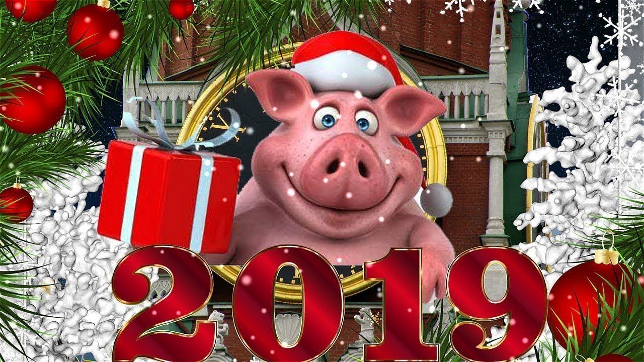 Поздравление, прикольные фото с наступающим новым годом 2019