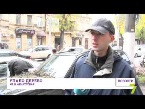 В центре Одессы упавшее дерево повредило машины и парализовало движение транспорта