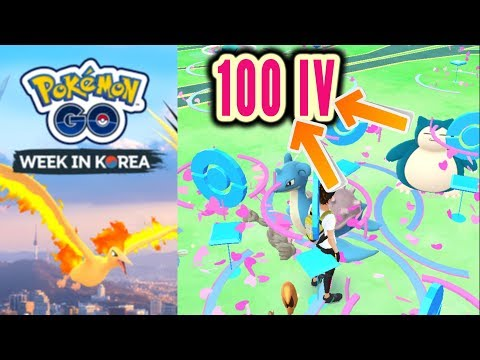 100% IV event in South korea (Chansey, Lapras, Snorlax, Golem and many more) Pokemon Go