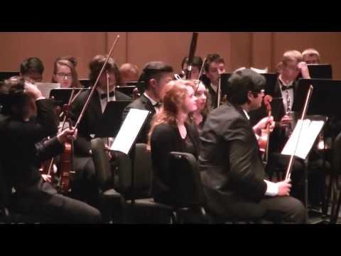 South Carolina Youth Orchestra Nov, 2016