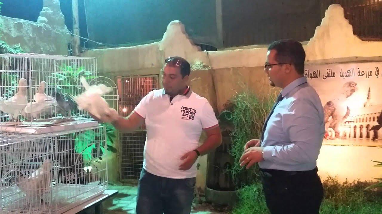 لقاء الاستاذ احمد عادل ابو هديل عن ( ريحانى اهل الشام )