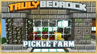Truly Bedrock S1E36 Pickle Farm & Shulker Loaders | Minecraft Bedrock Edition SMP, MCPE, MCBE