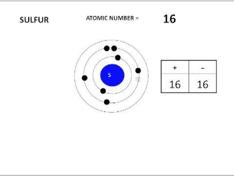 Atoms vs. Ions
