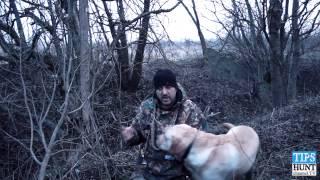 Охота на селезня весной.Где искать место охоты?