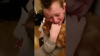 Boy Reunites with Lost Cat After Seven Months - 1017588