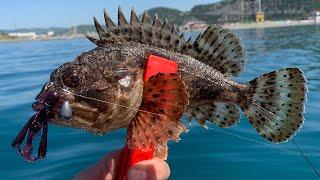 Рыбалка на ЧЕРНОМ Море. Большой Утриш Весна 2021
