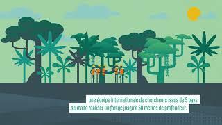 TROPICOL : accéder aux archives du climat de l'hémisphère sud