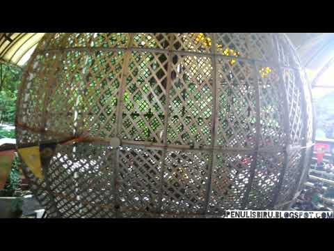 Nonton Globe of Death di Taman Safari Indonesia