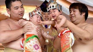 Весенний фестиваль сумо состоялся в Токио