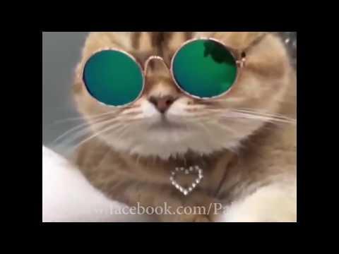 lag de lahore de aa - Guru Randhawa ( Funny Video )