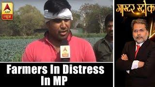 Master Stroke: Farmers In Distress Even With CM's Bhavantar Scheme In Madhya Pradesh   ABP News