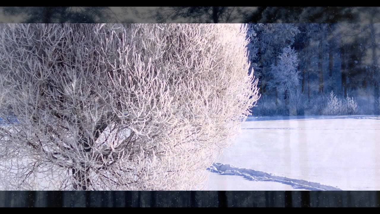Картинки по запросу природа россии зима