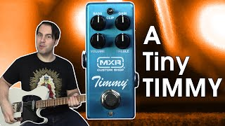 A Boutique Legend...MINIATURIZED! | MXR Custom Shop Timmy Overdrive | Stompbox Saturday S7 E7