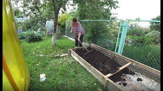 Как сделать гряду для садовой земляники?