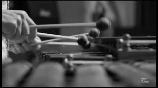 Sones de Marimba  - Tio Guachupecito