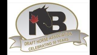 Horsephotos Congratulates NBDHA 50 Yrs 2017