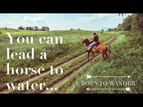 Kazakhstan: You can lead a horse to water