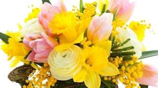 Доставка цветов Пермь. Акции, скидки, фото вручения(Сервис заказа и доставки цветов по всему миру http://goo.gl/JDnnq1 Преподнести цветы – теперь так просто! Интернет-м..., 2015-02-10T14:02:49.000Z)