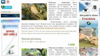 видео Постраничная навигация в комментариях WordPress без плагина