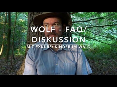 Wolf FAQ: Rudel, Beute, Abwehr, Kinder und der Wolf.