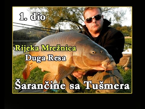 ŠARANČINE SA TUŠMERA_RIJEKA MREŽNICA 1. dio / V.S.P. / Fishing Croatia.TV