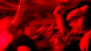 Die Orsons - Ode an die Fans live in Hamburg...