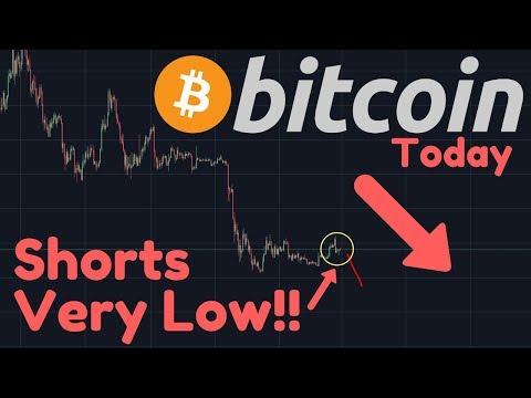 HUGE Crash Predicted By The Bitcoin SHORTS Chart?? | Small Pump Before Dump Possible?