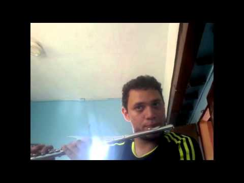 Katy Perry -Roar- Cover flute