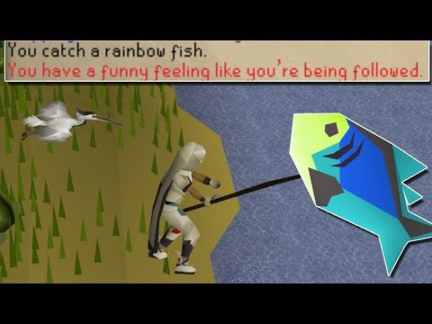 I May Be The Only Person To Ever Achieve This! Catching Rainbow Fish For 1 Hour! [OSRS]