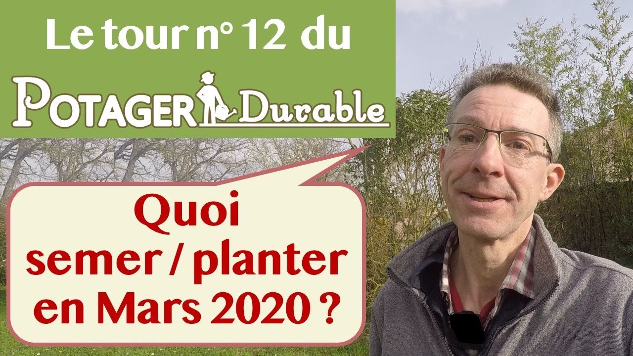 Quelle Salade Planter Maintenant quoi semer ou planter en mars • potagerdurable