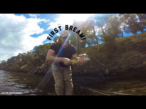 BREAM On The FLY || Fishing Tasmania 2019: River Derwent