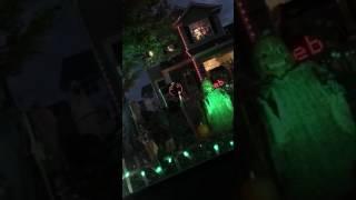 Halloween lights 2016
