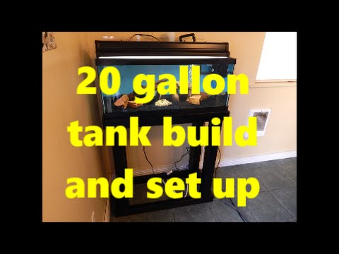 Complete 20 gallon long tank build and setup with stand and sump.